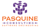 Pasquine Consulting Technology